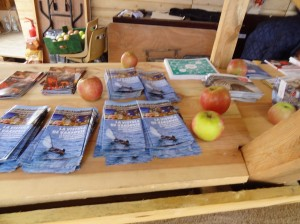 Ulotki i jabłka z Polski na Polskim stoisku w czasie festiwalu Loary w Orleanie