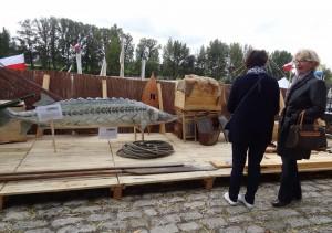 Makieta Jesiotra ostronosego na stoisku Polskim w trakcie Festiwalu Loary w Orleanie
